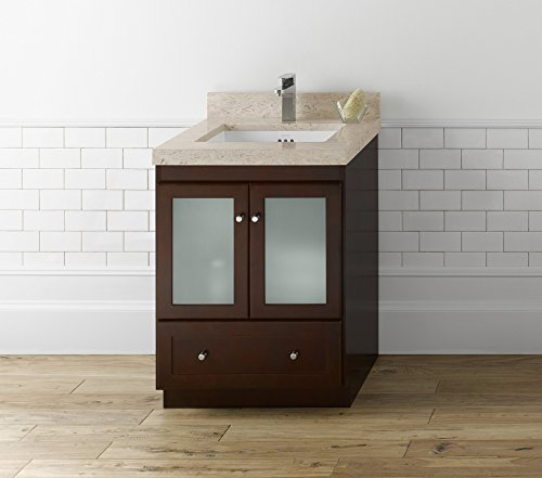 RONBOW ESSENTIALS Shaker 24 Inch Bathroom Vanity Cabinet Base in Dark Cherry Finish, with Soft Close Frosted Glass Doors and Full Extension Drawers 080824-1-H01 -