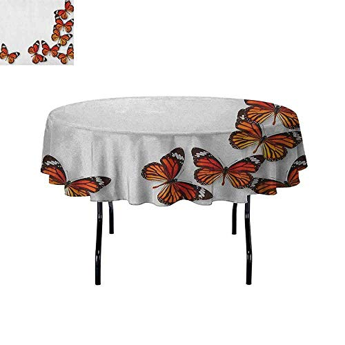 - DouglasHill Butterflies Leakproof Polyester Tablecloth Monarch Butterfly Figures Flying Frame Insect Exotic Weather Outdoor and Indoor use D51 Inch Dark Brown Marigold Orange