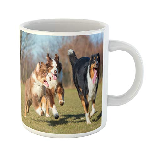 Semtomn Funny Coffee Mug Three Australians Shepherds One Puppy and Two Adults Running 11 Oz Ceramic Coffee Mugs Tea Cup Best Gift Or Souvenir ()