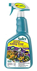 Safer Brand 5112 Insect Killing Soap,  24-Ounce Spray
