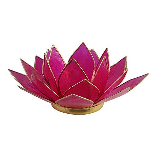 The Crabby Nook Lotus Tea Light Candle Holder Capiz Shell De