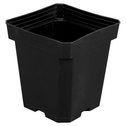 Black Square Magnum Pot 6 Inch x 6 Inch x 7 Inch