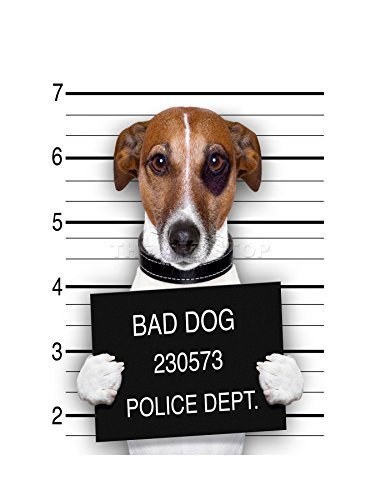 JACK RUSSELL DOG MUGSHOT POLICE BAD PHOTO ART FRAME PRINT PICTURE ()