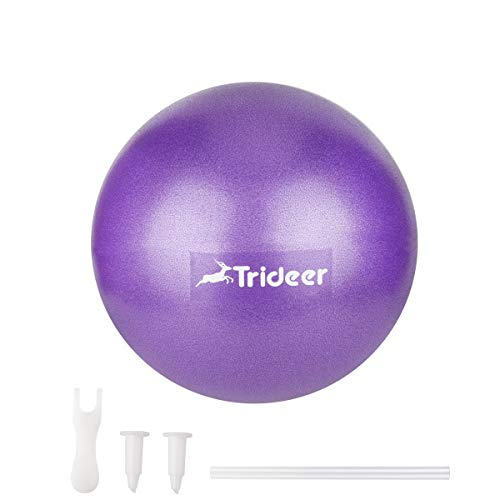 Trideer Pilates Ball, Barre Ball, Mini Exercise Ball, 9 Inch Small Bender Ball, Pilates, Yoga, Core Training and Physical Therapy, Improves Balance, Core Strength & Posture (Home & Gym & (Knee Physical Therapy)