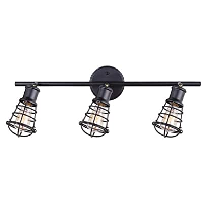 CANARM LTD. IT356A02BPT10 James 2 Bulb Track Light