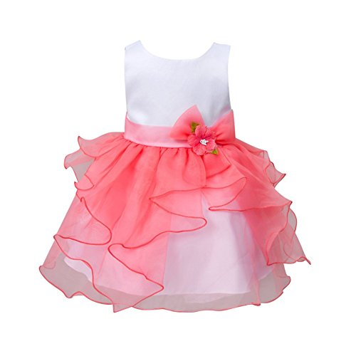 Zhengpin Flower Girl Baby Toddler Clothes Princess Wedding Party Pageant Fancy Tutu Dress (S(0-6Months), Light (Easy Fancy Dress Costumes)