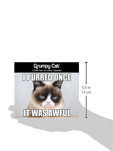 Grumpy Cat 2016 Calendar Year In A Box 0038576445369 Amazon