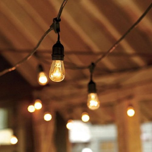 Outdoor String Lights Black Cord : String Light Company Vintage 48-Ft Outdoor Commercial String Lights with 15 Suspended Sockets ...