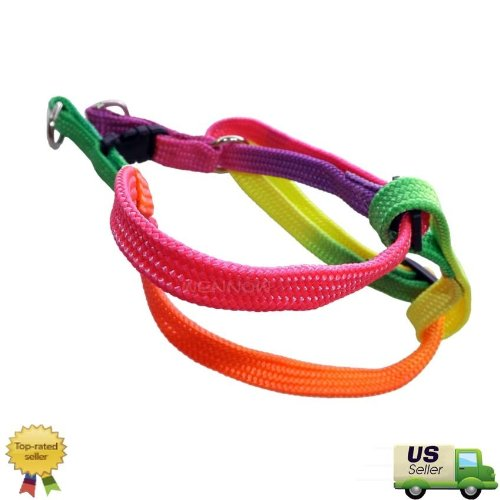 WennoW Rainbow Color Adjustable Fashion Cute Small Size Nylon Dog Harness