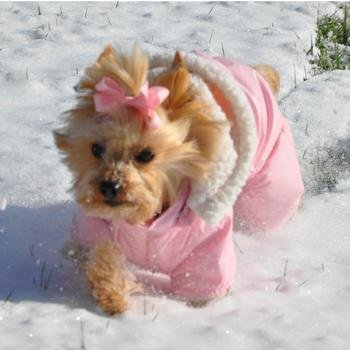 Doggie Design Pink Ruffin It Dog Snow Suit Harness (Sherpa Fleece) - Pink Medium (M) (Doggy Snowsuit)