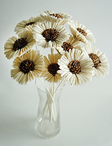 Plawanature Set of 10 White Sun Flower Sola Wood Flower with Reed Diffuser for Home Fragrance Aroma Oil.