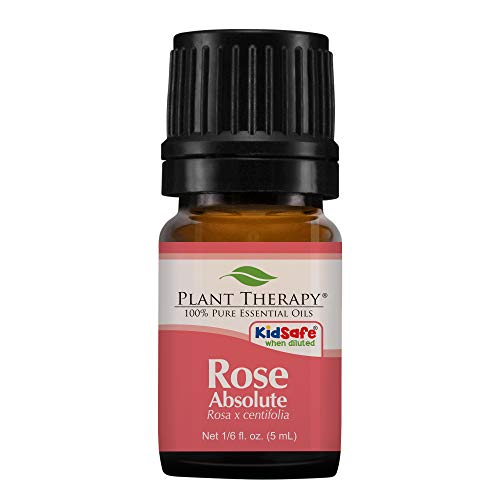 Rose Absolute Essential Oil. 5 ml . 100% Pure, Undiluted, Th