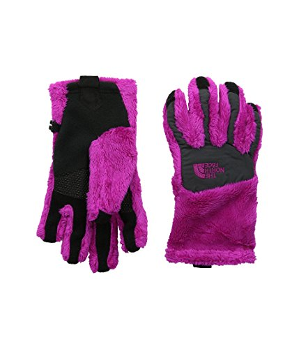 North Face Denali Thermal Etip Gloves Big