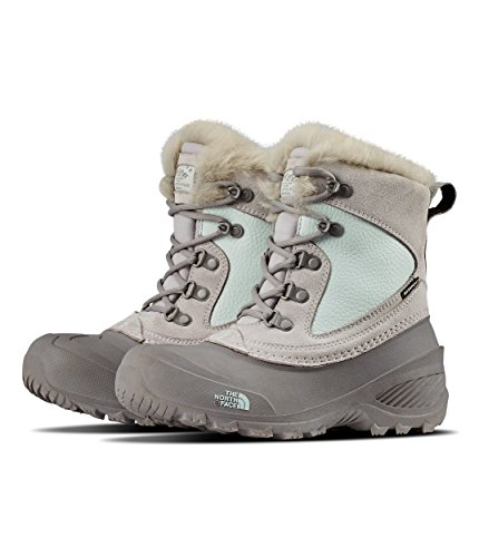 (The North Face Kids Baby Girl's Shellista Extreme (Toddler/Little Kid/Big Kid) Foil Grey/ICEE Blue 6 M US Big Kid M)