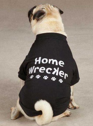Casual Canine Home Wrecker Dog Tees Size: XX-Small