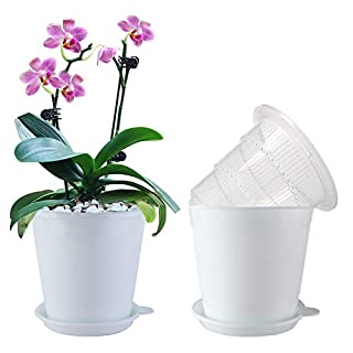 Meshpot 4 Inches Clear Plastic Orchid Pots with Holes - 2 Inner Pot,2 Outer Pot,2 Tray (2PCS Clear White)