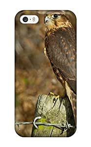 Randall A. Stewart's Shop Case Cover Falcon Iphone 5/5s Protective Case 9063141K70760019