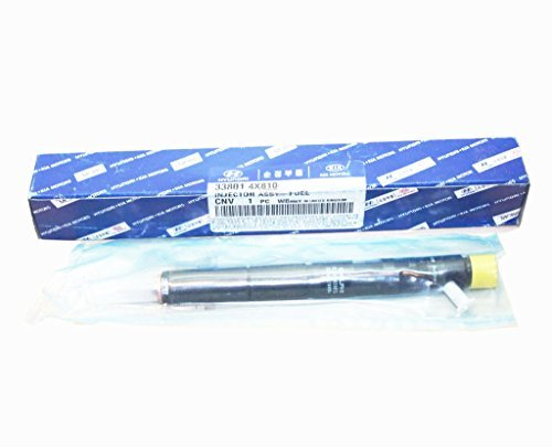Injector 33800 4X800 338014X810 Ejbr02901D Terracan Basic Facts