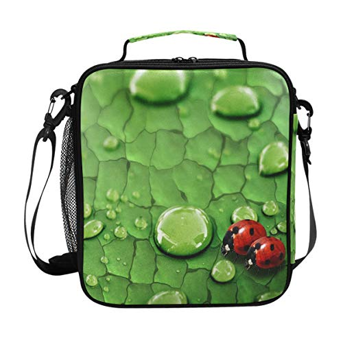 Lunch Box Insulated Waterproof Raindrops On Green Leaf And Ladybug Lunch Bag for School Office Picnic