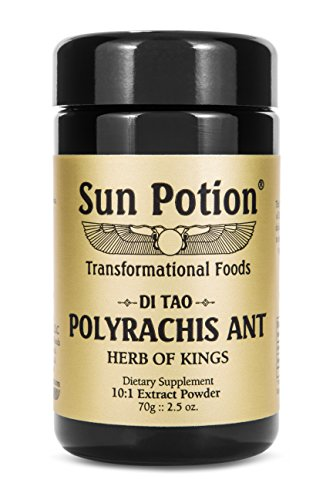 Polyrachis Ant Powder by Sun Potion – Black Ant Wildcrafted 10:1 Extract, Qi Tonic, Dietary Supplement – Highest Levels of Zinc – Strengthens Immune System, Anti-Aging, Boost Energy – 70g Jar