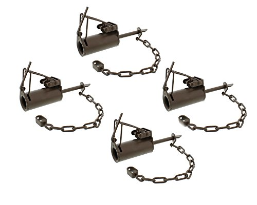 Redneck Convent Duke Dog-Proof DP Animal Leg Trap 4-Pack - for Raccoon, Nutria, Fox, and Mink Trapping - Pet-Safe/Pet-Friendly