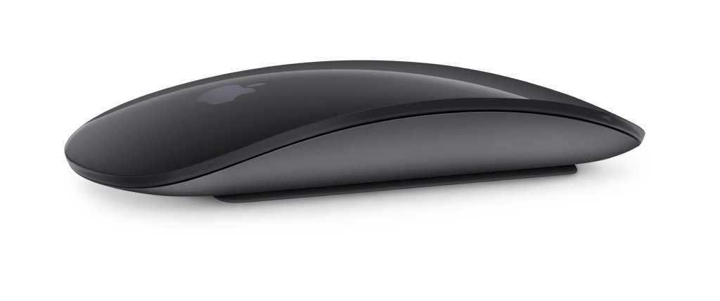 ef28a121aef Amazon.in: Buy Apple Magic Mouse 2 (Wireless, Rechargable) - Space Gray  Online at Low Prices in India | Apple Reviews & Ratings