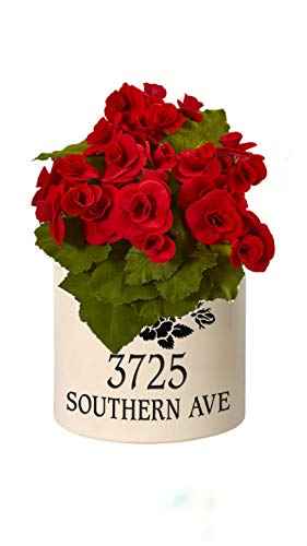 (Personalized Rose Stem 2 Gallon Stoneware Crock (Black Crock with Red Flower))