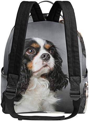 EU Cavalier King Charles Spaniel Dog Mochila Impermeable con cord/ón Bolsa de Gimnasio Mochila Deportiva para Hombres Mujeres Ni/ñas 36 x 43 cm 14.2 x 16.9 Pulgadas
