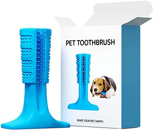 Amazon.com: Bizzair - Cepillo de dientes para perro, juguete ...
