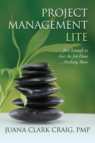 Project Management Lite: Just Enough to Get the Job Done…Nothing More Pdf