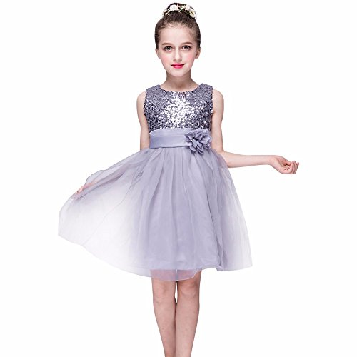 Kehen Little Baby Big Girl Flower Embroidery Sleeveless Wedding Tulle Party Dress Silver 4T