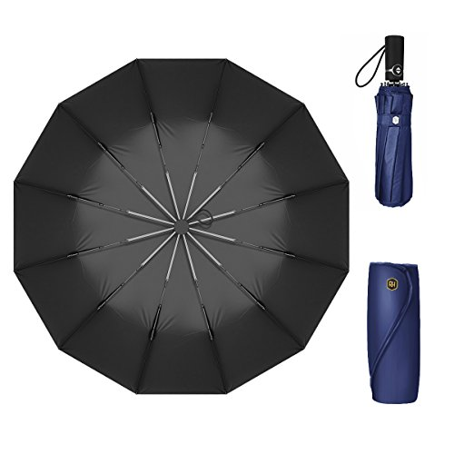 12 Ribs Travel Umbrella Windproof-Compact Umbrella Foldable with Auto Open/Close- Simplified Design Umbrella for Men&Women Ruxy Humy (Blue)