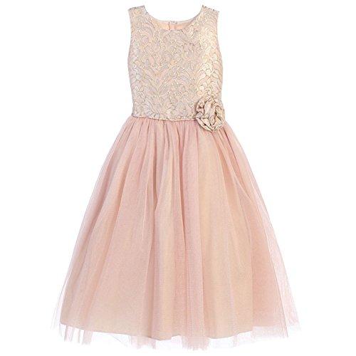 (Sweet Kids Big Girls Pink Rosette Ornate Jacquard Tulle Easter Dress 12)