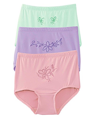 Teri Lingerie 3-Pack Embroidered Microfiber Panties, Assorted, 6 (Embroidered Full Briefs)