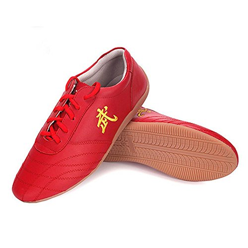 BJSFXDKJYXGS Chinese Wushu Shoes taolu Kungfu Shoes Practice Martial Arts Shoes Taichi Shoes for Men Women Adults Fashion Sneakers (US11//EUR47//28.5CM, Red)