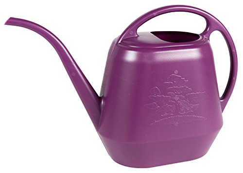 Caddie Gas Patio - Bloem Aqua Rite Watering Can, 56 oz, Passion Fruit (AW21-29)