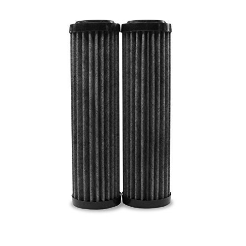 EcoPure EPW2F Premium Carbon with FACT Media -Universal Whole Home Water Filter - Innovative Product - Better Filtration and Longer Life Versus Most Whole Home Water Filters (2 Pack) (Filter Products Water Sediment Filtration)