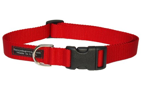 Sassy Dog Wear 13-20-Inch Red Nylon Webbing Dog Collar, Medium