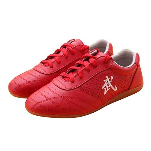 BJSFXDKJYXGS Chinese Wushu Shoes taolu Kungfu Martial Shoes Taichi Shoes for Men Women Fashion Sneakers (US6//EUR37//23.5CM, Red Ventilate)