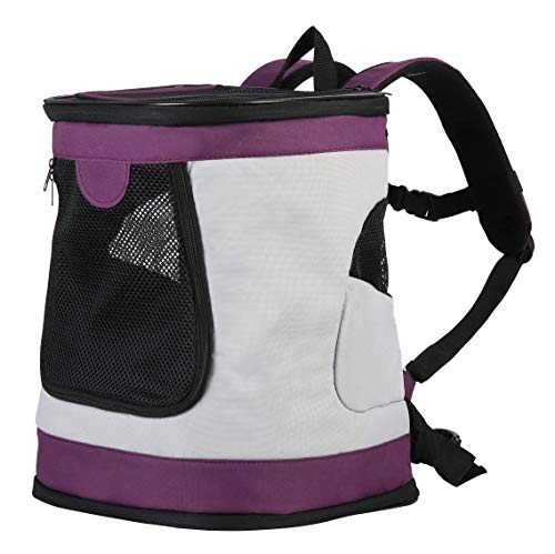 Iconic Pet Foldable Pet Backpack Carrier for Dogs & Catsup to 16 lbs, Magenta/Light Gray