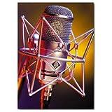 Neumann M147 Cardioid Tube Condenser Microphone
