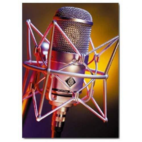 Cardioid Tube Condenser Microphone - Neumann M147 Cardioid Tube Condenser Microphone