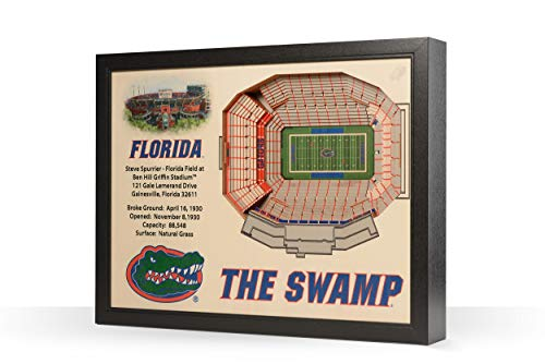 NCAA Florida Gators 25-Layer Stadiumviews 3D Wall Art