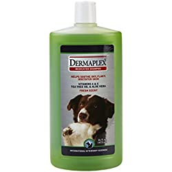 Dermaplex Medicated Natural Shampoo for Dogs - with Organic Tea Tree Oil Antiseptics, Vitamins A & E for Coat & Skin Nutrition and Overall Health, 16 oz