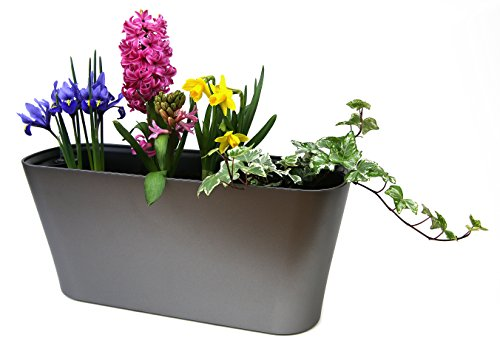 Self Watering Planter by MyEasygro for Indoor and Outdoor | Excellent Pot for Flowers, House Plants, Herbs, Vegetables, Seeds | Water Level Indicator | Create an Urban Garden | 16