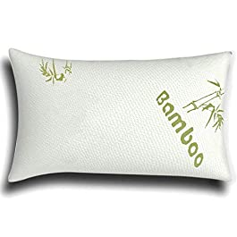 Memory Foam Cool Orthopaedic Bamboo Pillow, Queen Size
