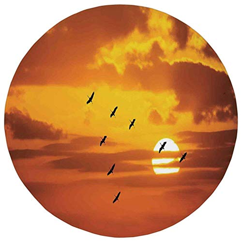 Shining Dial Round (K0k2t0 Round Rug Mat Carpet,Birds,V Shaped Formation Flying in Cloudy Sky with a Shining Sun at Sunset Cloudscape Print,Orange,Flannel Microfiber Non-Slip Soft Absorbent,for Kitchen Floor Bathroom)