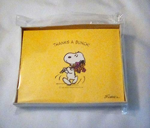 New Hallmark Box Peanuts Snoopy & Woodstock Thank You Note - Thank You Snoopy