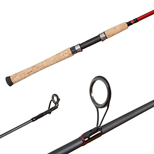 The 10 Best Spinning Rods For Bass - Crow Survival