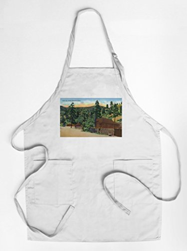 colorado-springs-colorado-north-cheyenne-canyon-exterior-view-of-bruin-inn-quality-cotton-polyester-